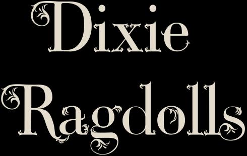 Dixie Ragdolls
